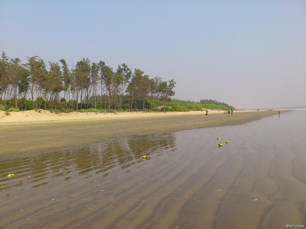 Tajpur_31